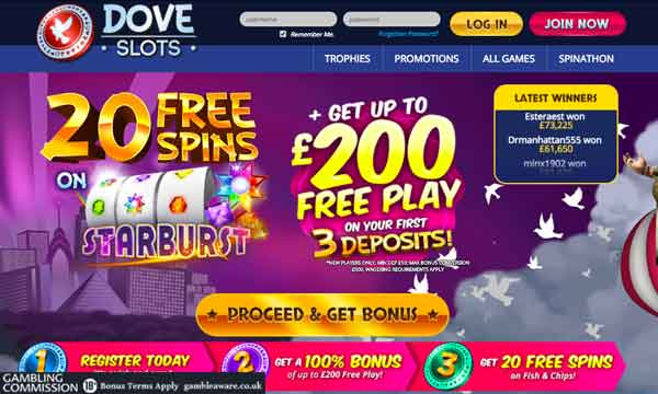 50 free Spins – 11506